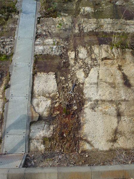 熊本地震の本震の「布田川断層帯」南に「未知の断層」か…その痕跡を発見