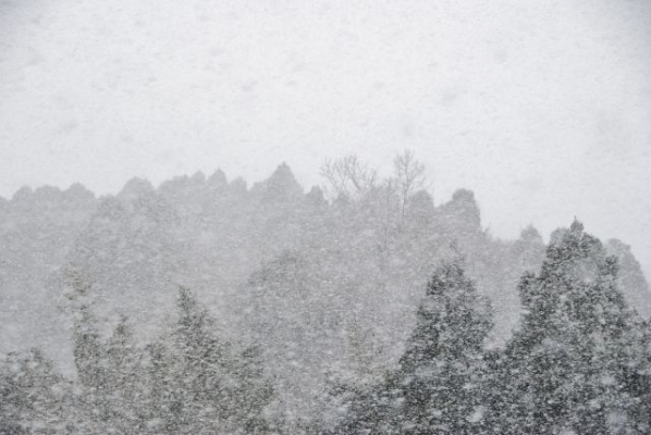 snow368736875.jpg