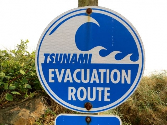 tsunami368765.jpg
