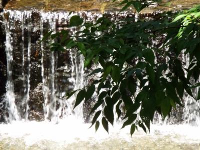 洒水の滝近辺その1