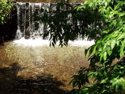 洒水の滝近辺その2