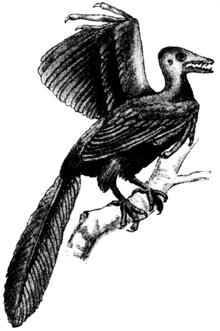 木にとまる始祖鳥