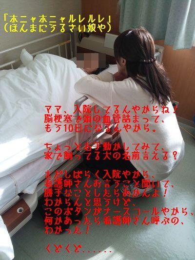 DSC_0217_V.jpg