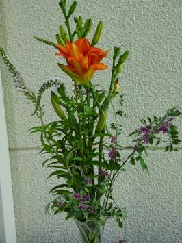 16野の花
