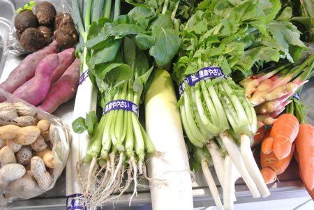 フェスで野菜