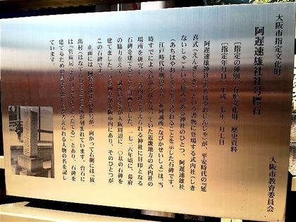 achihayaosyasyagoDCIM0442.jpg