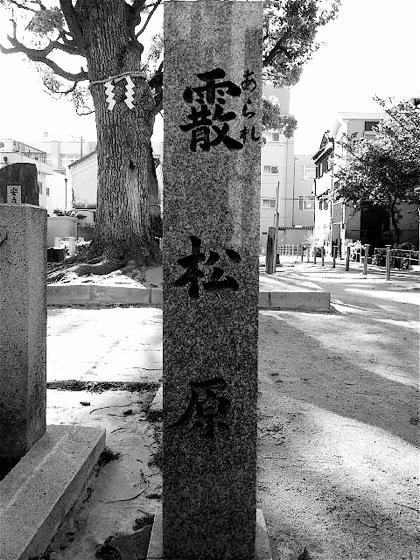 ararematsubaraDCIM1030.jpg
