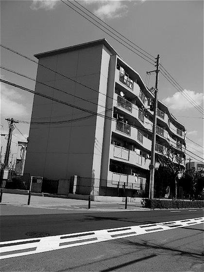 chikkooshioyuatoDCIM0186.jpg
