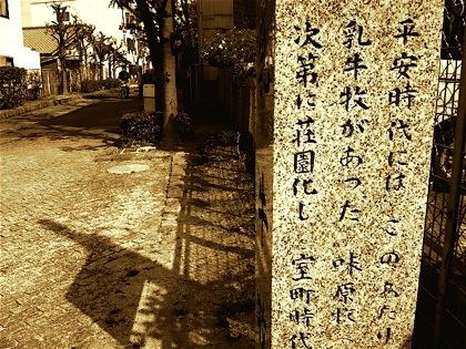 chushinomakiatoDCIM0650.jpg