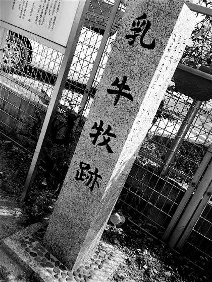 chushinomakiatoDCIM0657.jpg