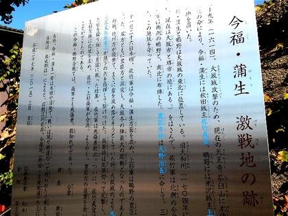 imafukugamotatakaiDCIM0301.jpg