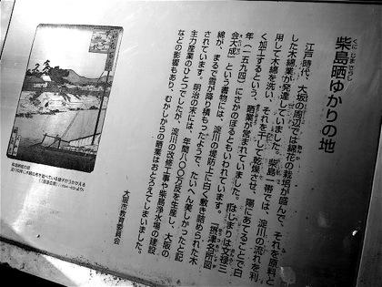kunijimasarashiyukarinochiDCIM0914.jpg
