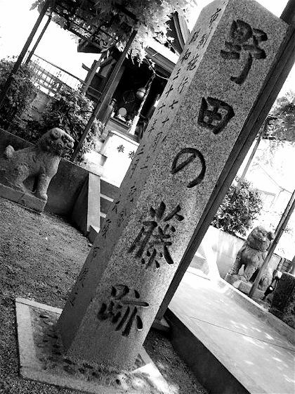 nodanofujiatoDCIM0051.jpg