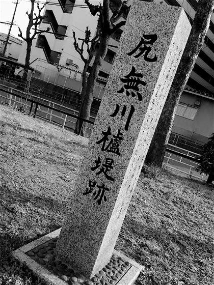 shirinashigawahazetsutsumiatoDCIM0374.jpg