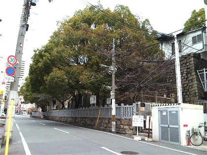 uekiyakichisukeDCIM0415.jpg