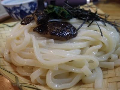 ウォタガうどん (5)