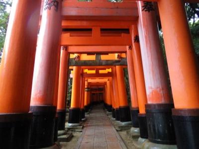 それは京都のお稲荷さんだ!! (7)