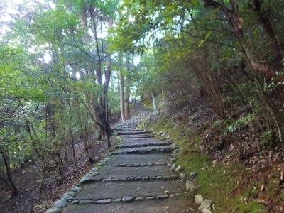 ストーム山 (8)