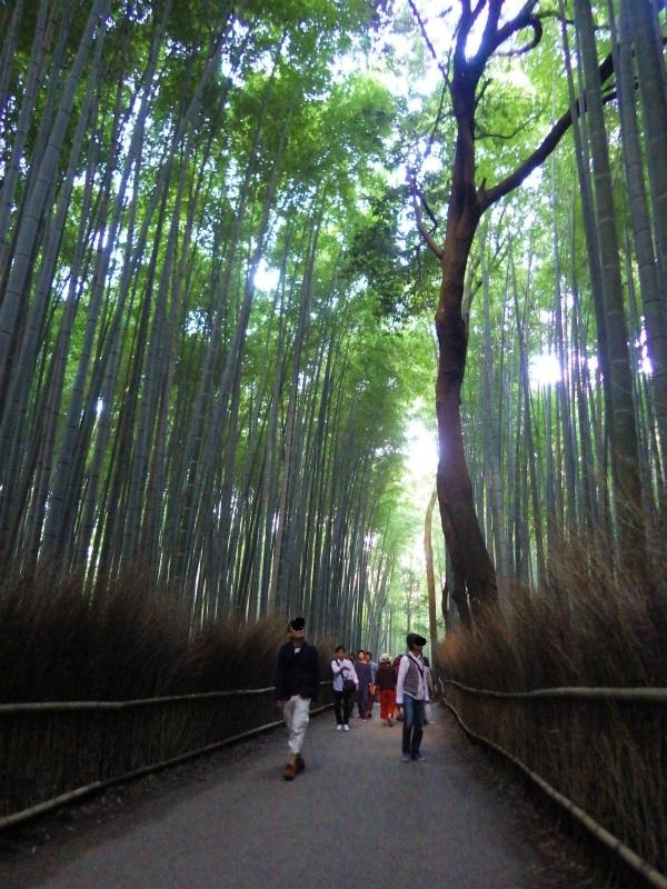 ストーム山 (10)