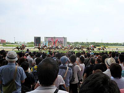 中京記念にてゴールする各馬