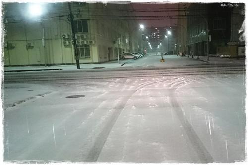 雪DSC_5485