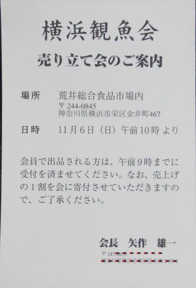 IMG_0019_サイズ変更