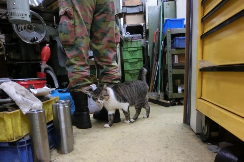 大田区 池上 パンタレイ panta rhei 旋盤 装身具 猫 ねこ