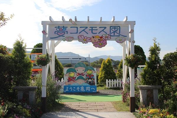 2016.10.20 亀岡夢コスモス園①-1