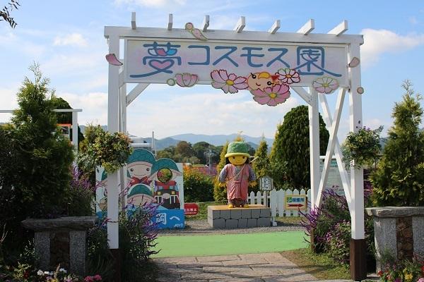 2016.11.04 亀岡夢コスモス園①-1