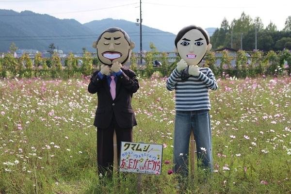 2016.11.06 亀岡夢コスモス園③-11
