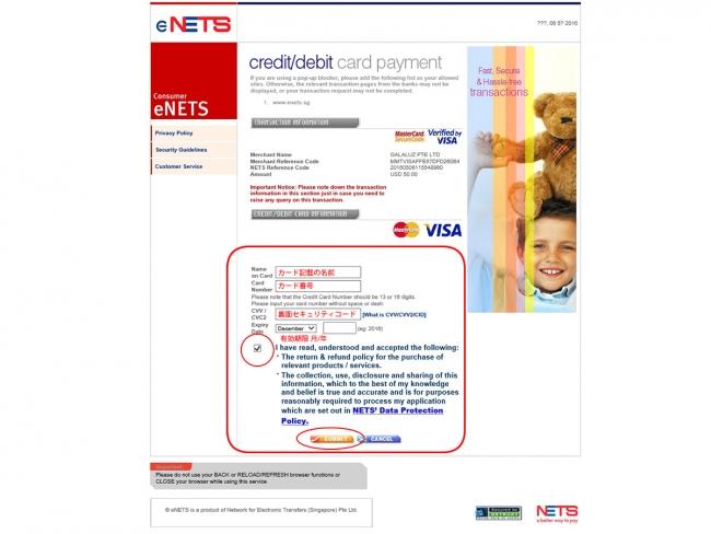 MyanmareVisa公式ウェブサイトでeVisa申請 クレジットカードの内容入力画面