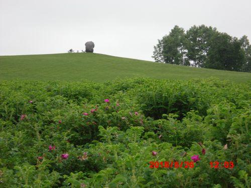CIMG0396六花の森
