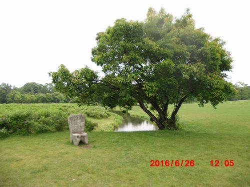 CIMG0399六花の森