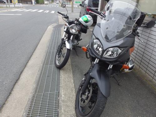 MX1_2058_R.jpg