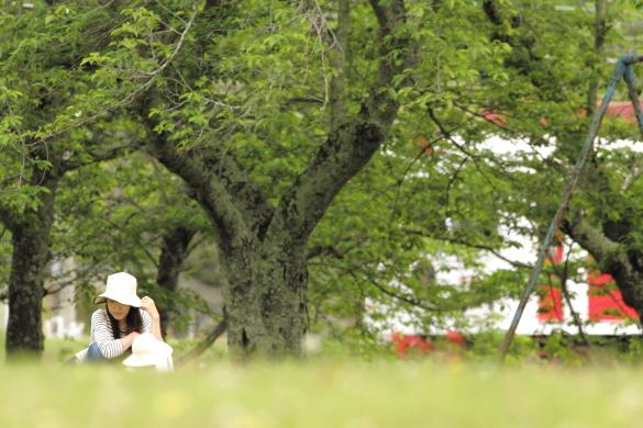 2016/5/7 和歌山電鐵貴志川線 大池遊園