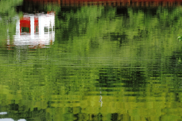 2016/6/26 和歌山電鐵貴志川線 大池遊園