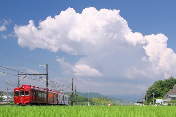 2016/8/7 和歌山電鐵貴志川線 大池遊園~西山口