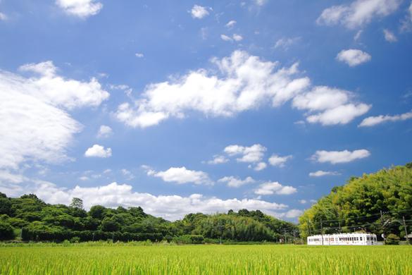 2016/8/27 和歌山電鐵貴志川線 大池遊園~西山口