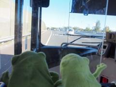 Sydney Autobahn M2