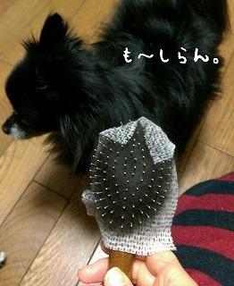 2016-11-03_20_59678.jpg