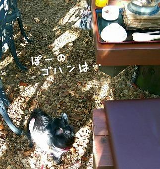 2016-11-07_175348.jpg