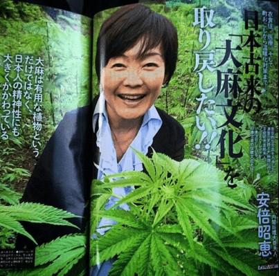②大麻で逮捕された上野俊彦は安倍昭恵の知人だった!安倍晋三も検査しろテリー伊藤も三宅洋平も怪しい!