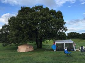 キャンプ1-8