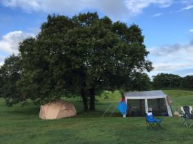 キャンプ2-1