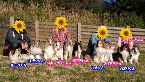 DSC_0705_convert_20161022144059.jpg