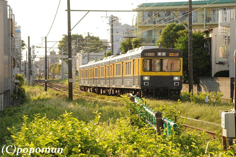 018 (2) - コピー2016 6 3 多摩川線 下丸子~武蔵新田 779 519 popoman