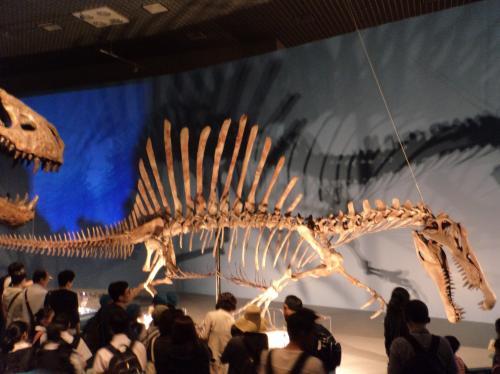 スピノサウルス・全身骨格_convert_20160608220257