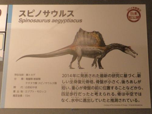 スピノサウルス・復元図_convert_20160608220407