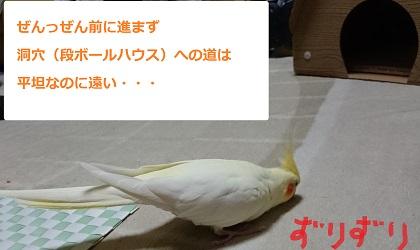 20161015_04.jpg