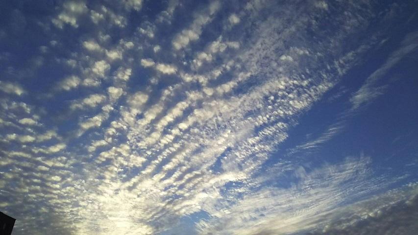 10月15日の夕方~の空は天界の白鳥が翼を広げたような、きれいな青と白の空でした4